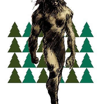Bigfoot or Sasquatch by theboonation