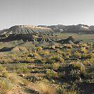 Colorado2 by Lily