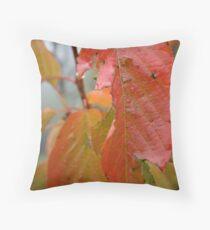 Coloured dew Throw Pillow
