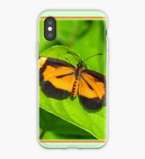 Heloconius Butterfly iPhone Case