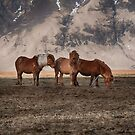 Three's Company by Andreas Mueller