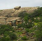 Enchanted Rock, Texas by Tamas Bakos