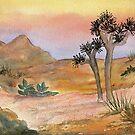 Joshua Tree NP by Diane Hall