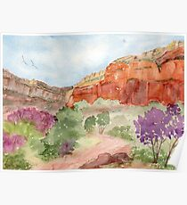 Bright Angel Trail, Grand Canyon Poster