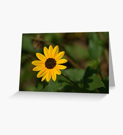 A Bit of Sunshine Greeting Card