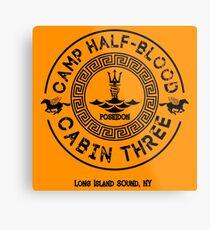 Lienzo metálico Percy Jackson - Campo Mestizo - Cabina Tres - Poseidón