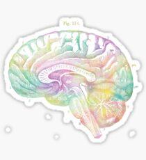 Ancient Brain Drawing - Type C Sticker