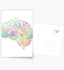 Ancient Brain Drawing - Type C Postcards