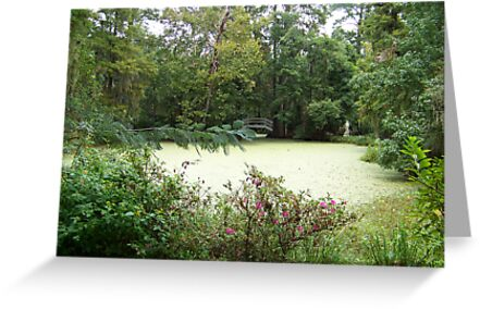 Magnolia Pond by Forget-me-not