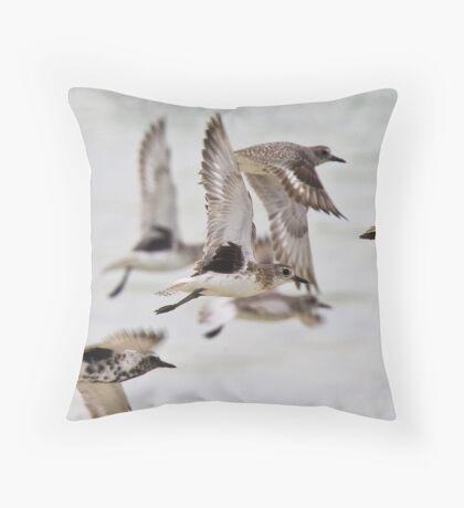 Grey plovers Throw Pillow