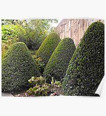 Topiary Garden Poster