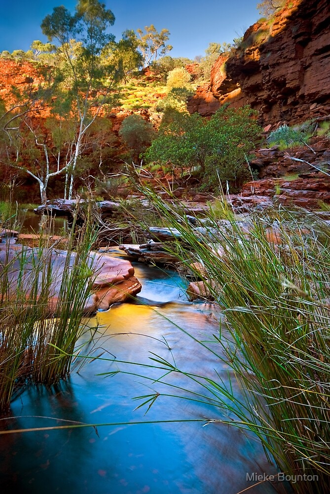 Weano Gorge by Mieke Boynton