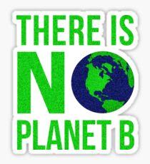 Pegatina No hay planeta B - ¡No hay planeta B!