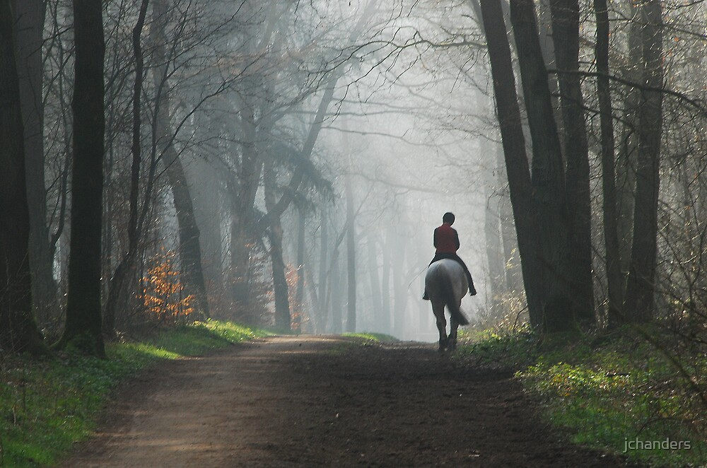 Riding out again on a misty morning by jchanders