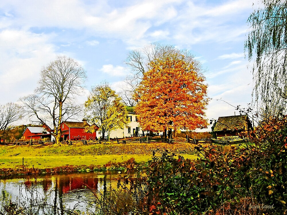 Farm by Pond in Autumn by Susan Savad