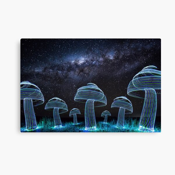 A field of mushrooms under the Milky Way Canvas Print