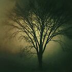 Between Darkness and Light.. by JOSEPHMAZZUCCO