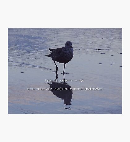 Capacity to care-inspirational Photographic Print
