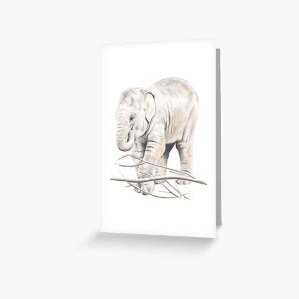 Elephant Calf Pencil Art Greeting Card