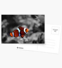 Suspension Postcards