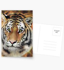 On The Prowl Postcards