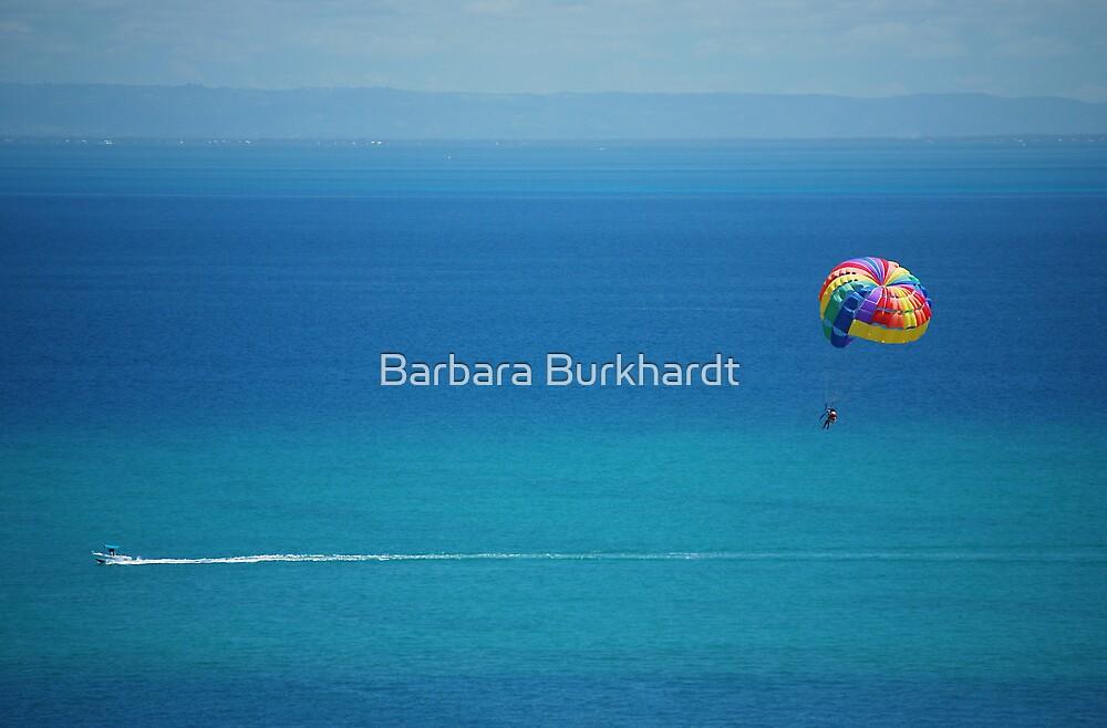 Holiday Playground - Para Sailing by Barbara Burkhardt