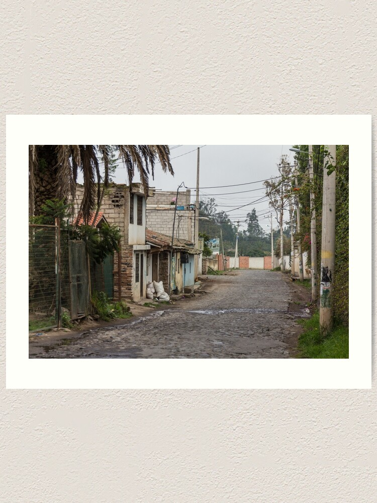 Alternate view of Rural street with buildings and utility poles in Puembo, Ecuador Art Print