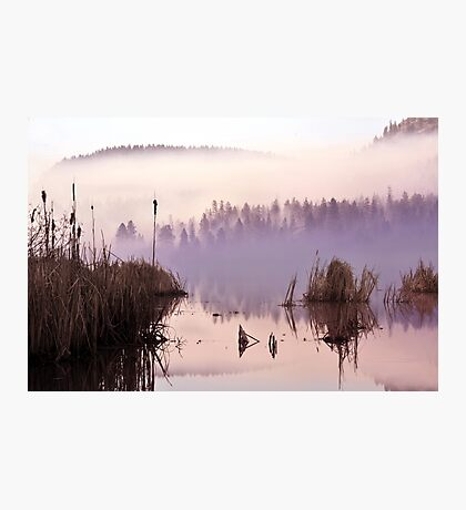 Misty Morning on the Lake Photographic Print