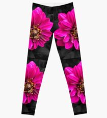Busy Bee Fashion and Home Decor Leggings