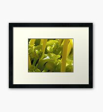 Super Macro Framed Print