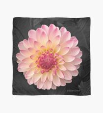 Pink Flower Art for Fashion and Home decor Scarf