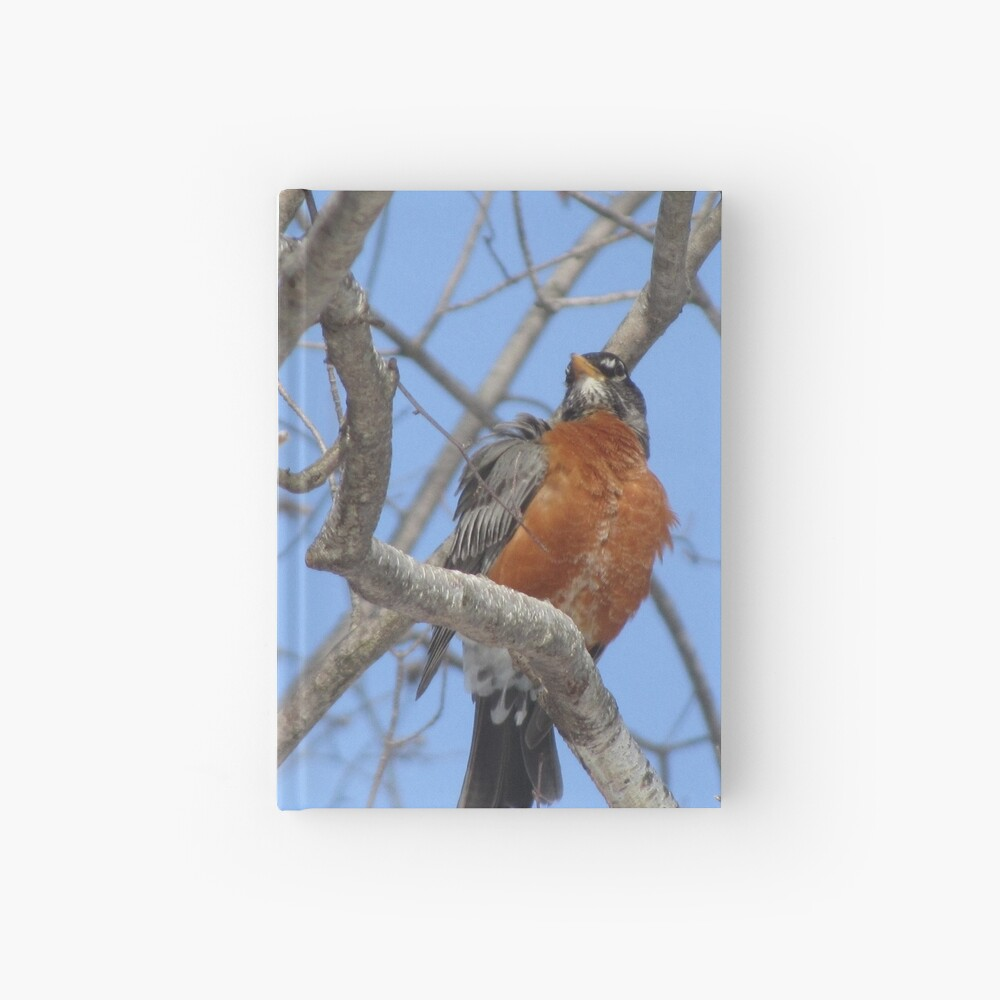 My Confidence Hardcover Journal