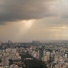 Saigon Storm  by Werner Padarin