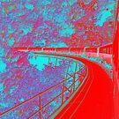 Train to Kuranda by medley