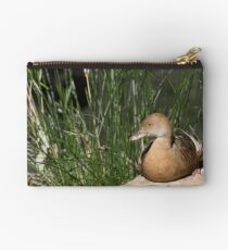 Plumed Whistling-duck Studio Pouch