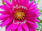 Mom = Love by FrankieCat