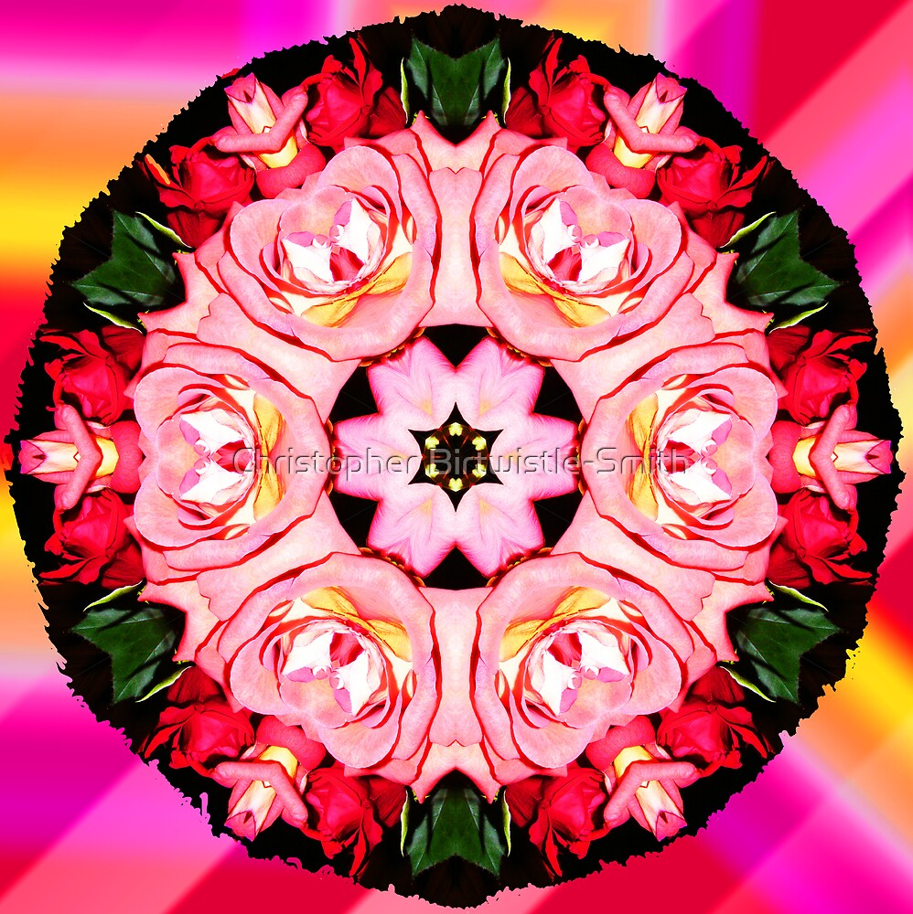 Sleeping Dogs: Rainbow Warriors Mandala 2   by Christopher Birtwistle-Smith