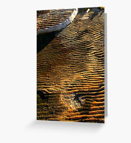 Ancient Ripples Greeting Card
