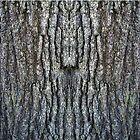 Tree Trunk by ScandalFan