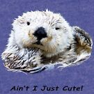 Aint I Just Cute!  by Dave  Knowles