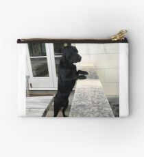 Black Labrador Standing Studio Pouch