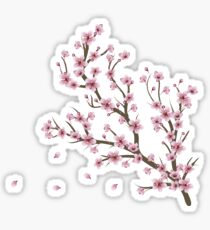 Blooming Sakura Branch 4 Sticker