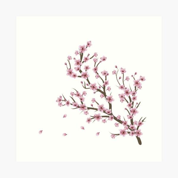 Blooming Sakura Branch design Art Print