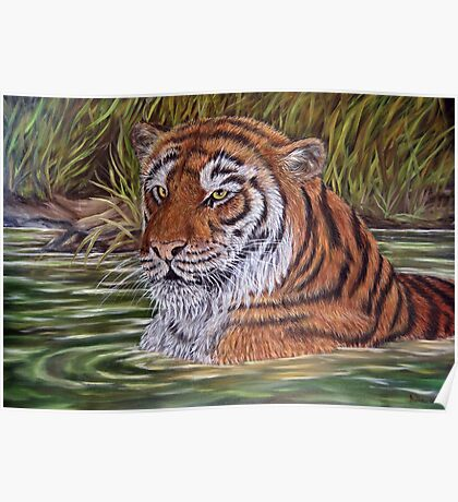 """Tiger Pool"" - Oil Painting Poster"