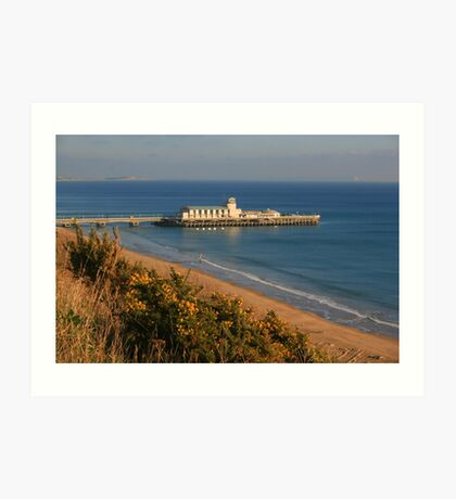 Pier from the West Cliff Art Print