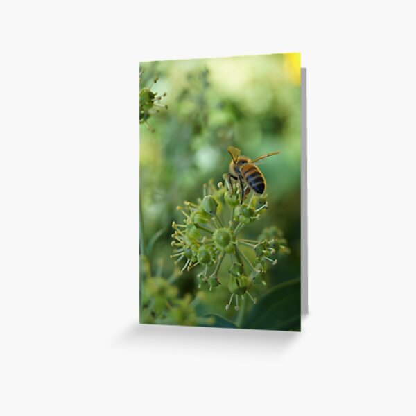 Inner City Buzz Greeting Card