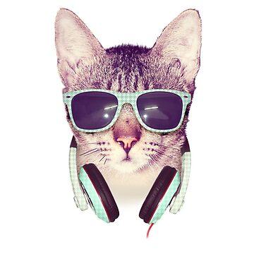 cat listen to music by hamzabarcelonaa
