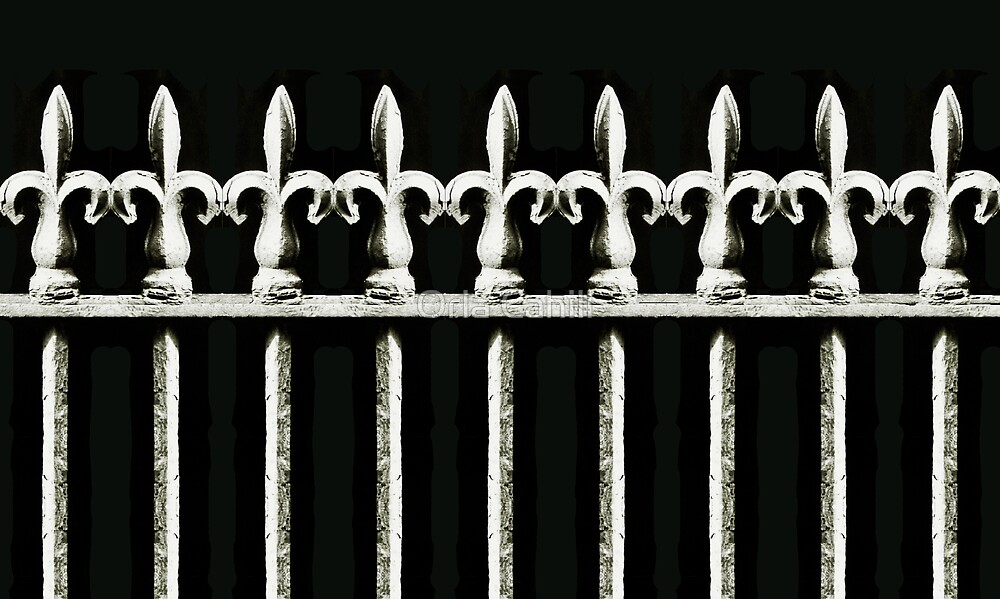 Wrought Iron by Orla Cahill