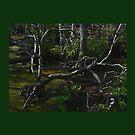 Mystical Swamp by glink