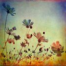 Spring Dreams by VictoriaHerrera